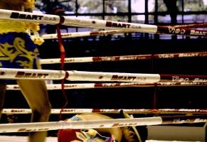 Muay Thai Baby Boxing